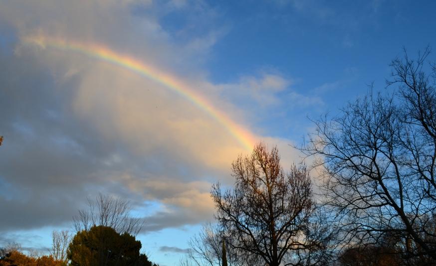 january rainbow.2