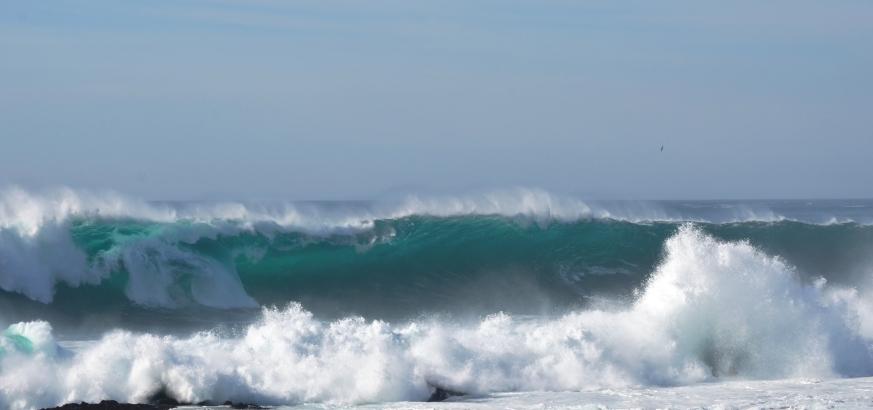 wave.3
