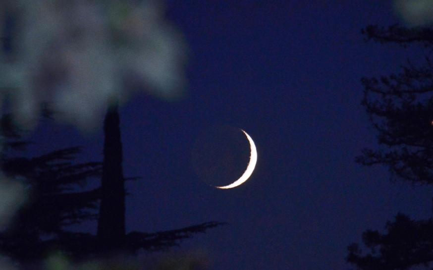 crescent moon.2