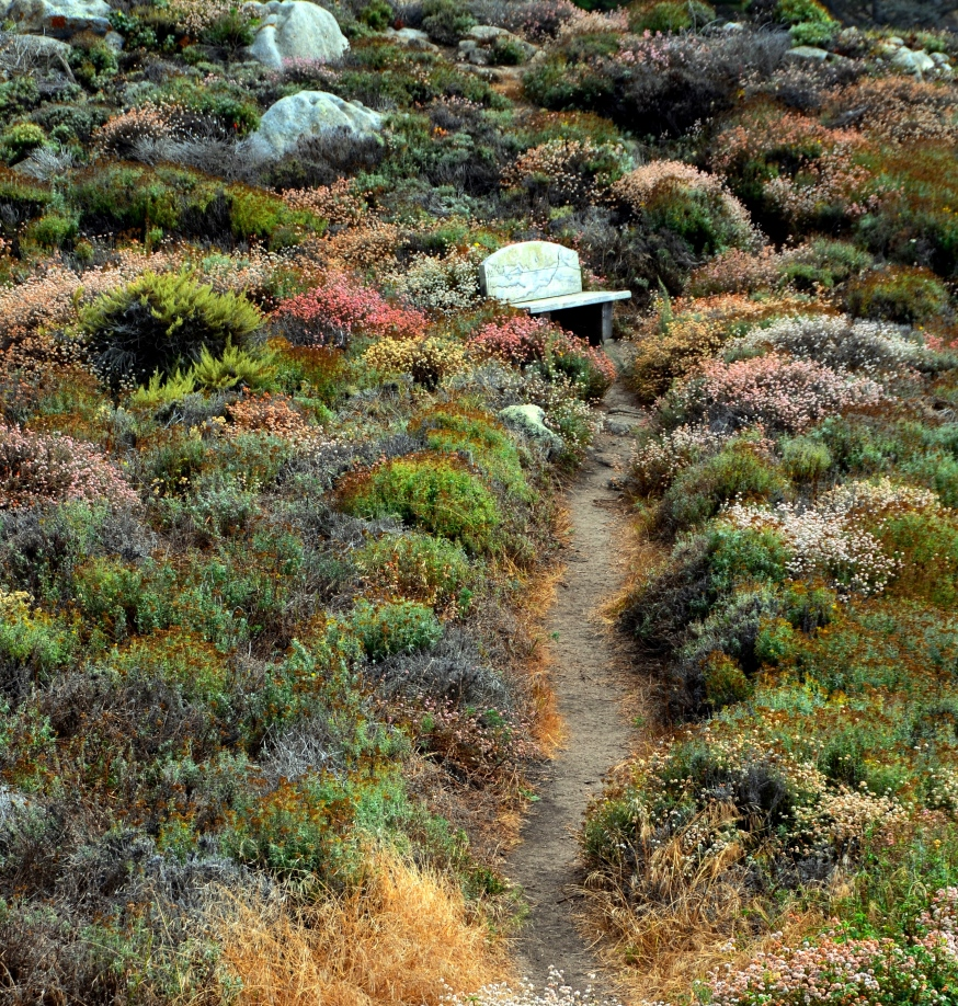 path8