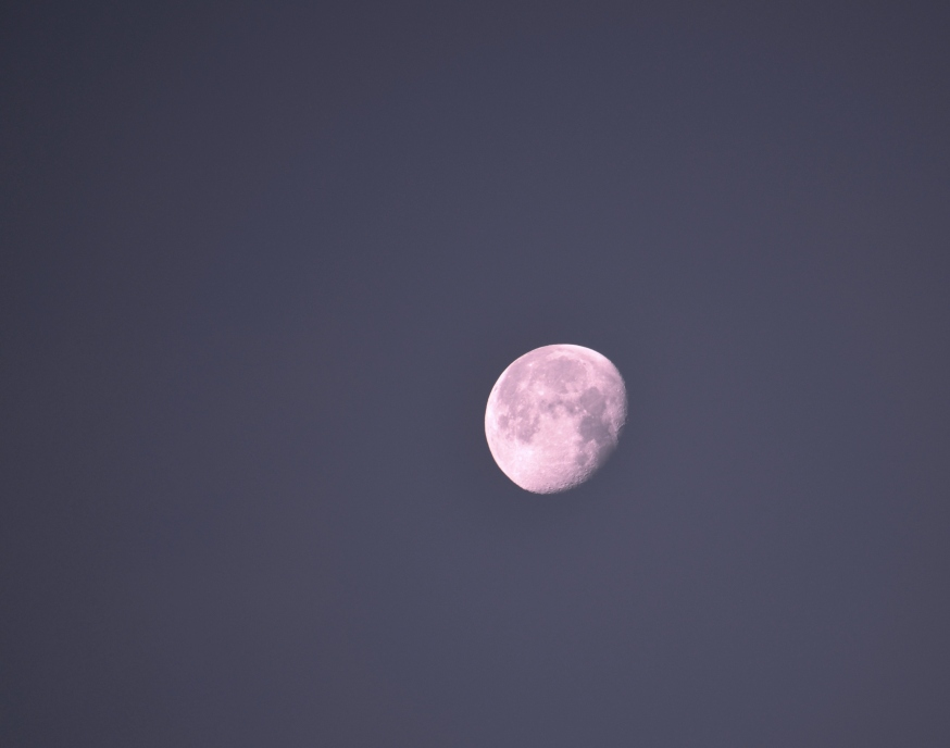 morning-moon-2