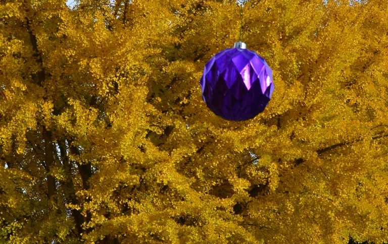 ornament by ginko