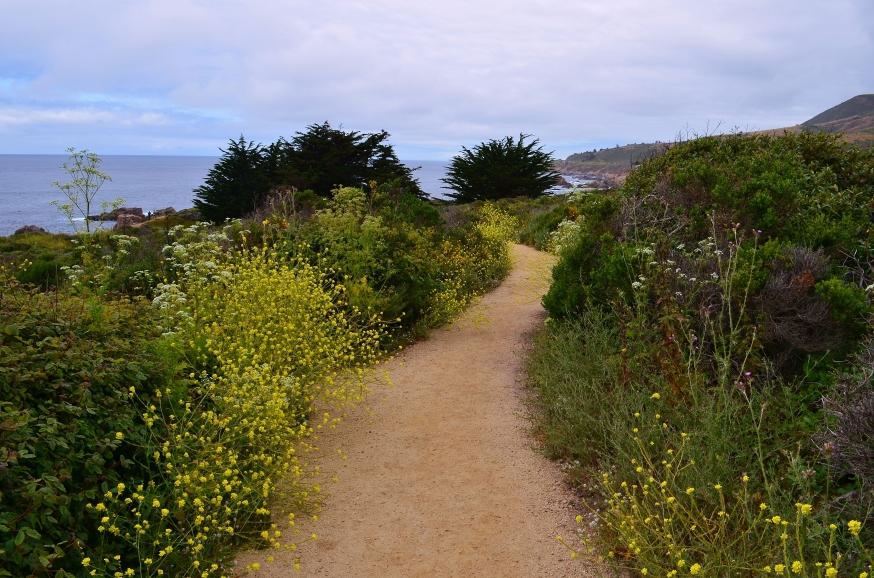 garapatta trail