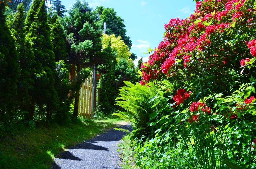 Astoria path