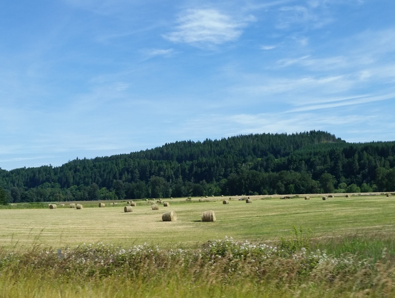 Oregon13