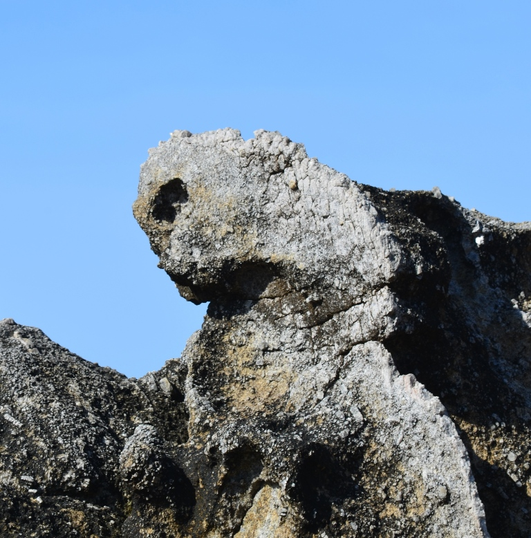 stone lion.JPG