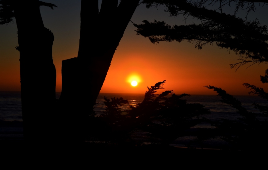sunset challenge.JPG