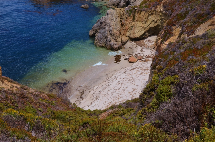private beach12.JPG